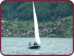Local dinghy sailing in Zurich